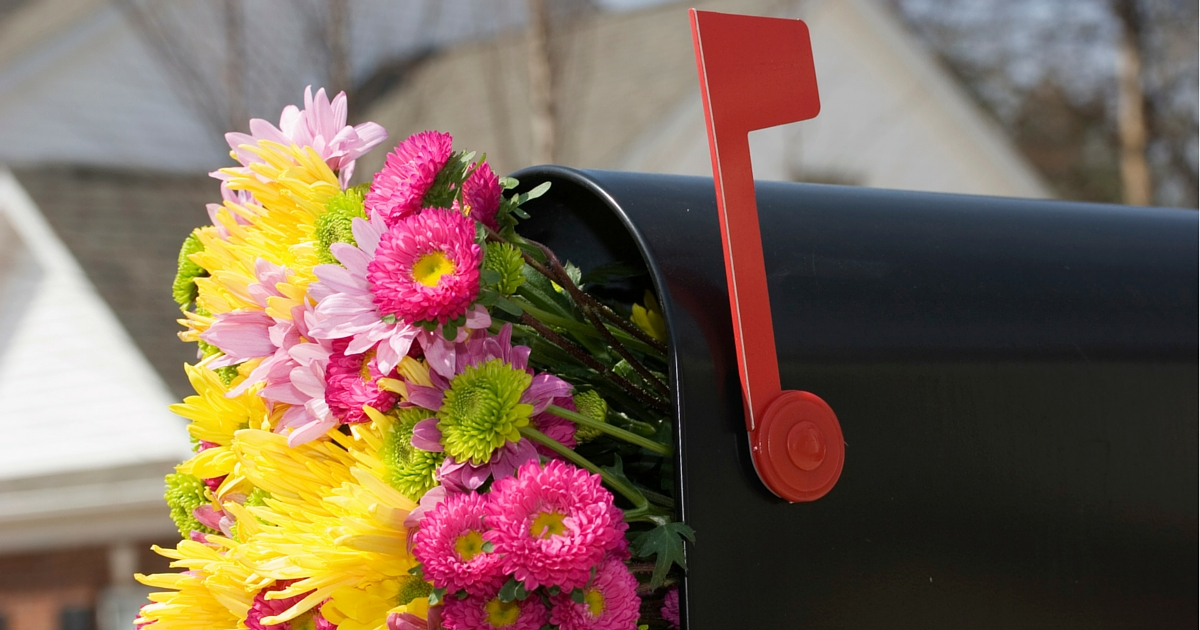 april spring flowers delivered in a mailbox